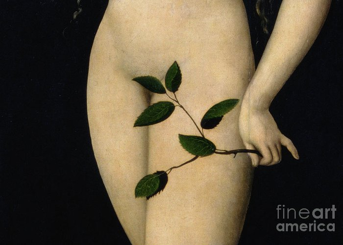 Nude; Garden Of Eden; Old Testament; Apple; Serpent; Fig Leaf; Close-up Greeting Card featuring the painting Eve by The Elder Lucas Cranach