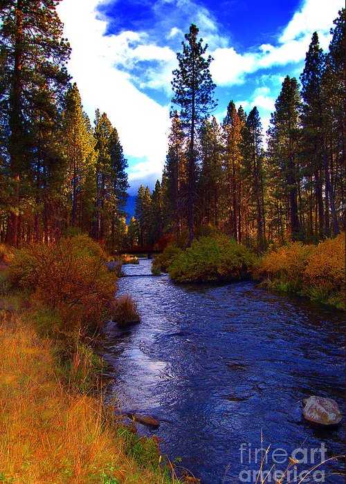 Diane Berry Greeting Card featuring the photograph Evening Hatch on the Metolius River Photograph by Diane E Berry