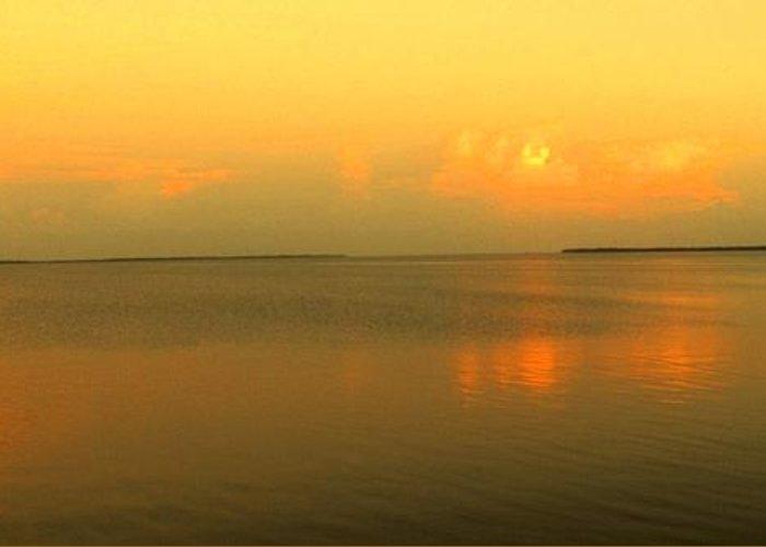 Florida Greeting Card featuring the photograph Evening Shades by Ian MacDonald