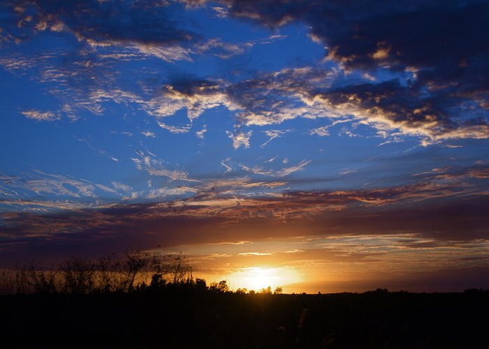 Sunset Greeting Card featuring the photograph Everglade Sunset by Kyle Petersen