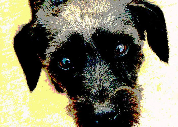 Dog Greeting Card featuring the mixed media Eye Contact by Dorrie Pelzer