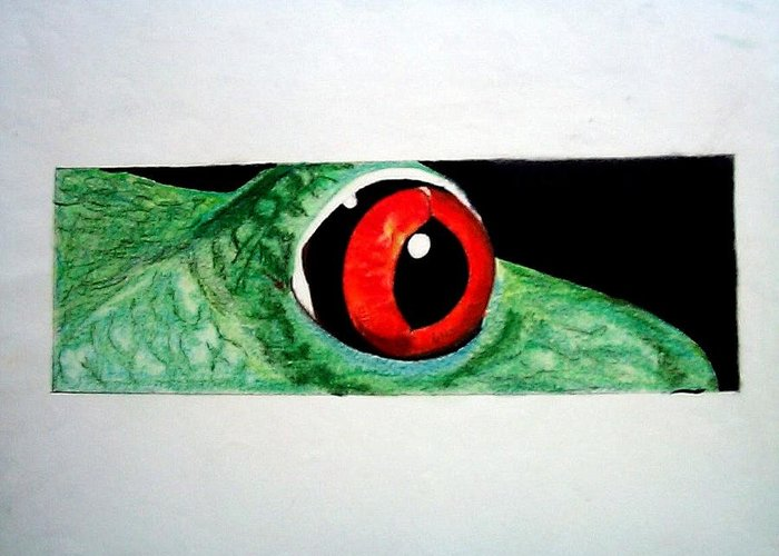 Animals Greeting Card featuring the drawing Eye Of The Red Eyed Tree Frog by Martin Lagewaard