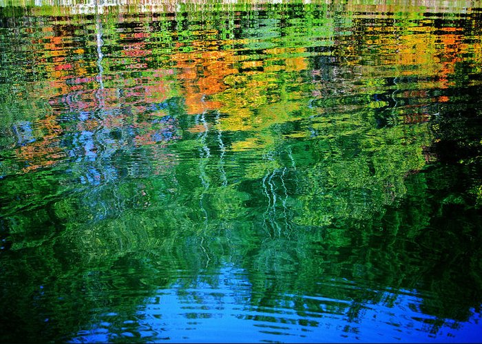 Reflections Greeting Card featuring the photograph Fabian Pond Reflections3 by Randy Bell