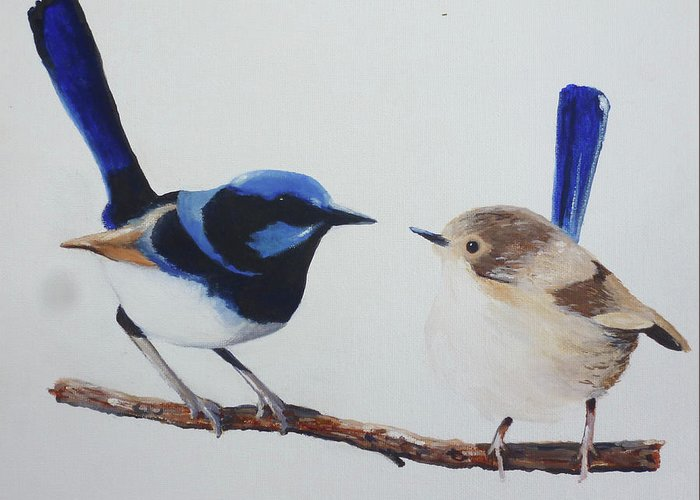 Birds Fairy-wrens Male And Female Love Blue Fairy Greeting Card featuring the painting Fairy Wrens - I Love You Too by Michael Rogers
