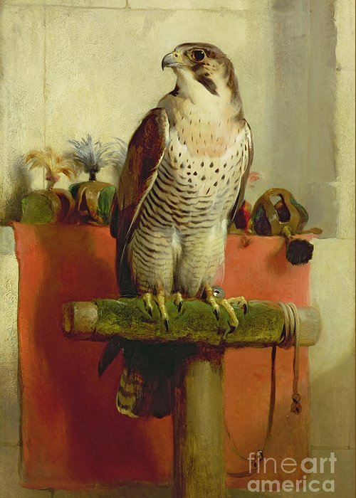 Falcon Greeting Card featuring the painting Falcon by Sir Edwin Landseer