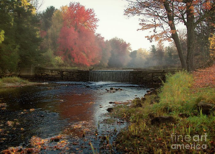 Foggy Fall Morning Greeting Card featuring the photograph Fall at Griffin Mill by Diana Nault