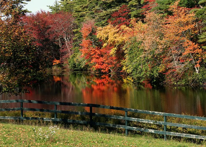 Fall Greeting Card featuring the photograph Fall At The Farm by Gina Cormier