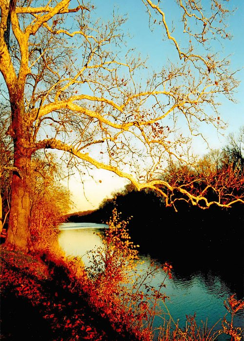 River Greeting Card featuring the photograph Fall At The Raritan River In New Jersey by Christine Till
