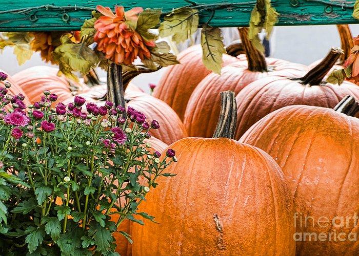 Pumpkins Greeting Card featuring the photograph Fall Display by Edward Sobuta