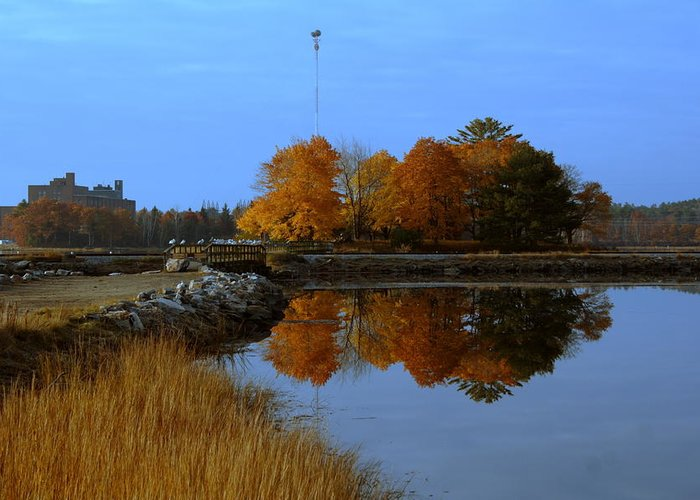 Fall Greeting Card featuring the photograph Fall by Doug Mills