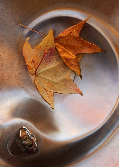 Abstract Water And Fall Leaves Greeting Cards