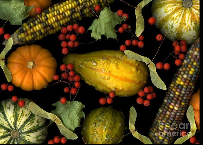Slanec Greeting Card featuring the photograph Fall Harvest by Christian Slanec