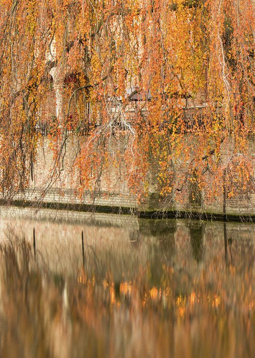 Fall Greeting Card featuring the photograph Fall in Bruges, Belgium by Dalibor Hanzal