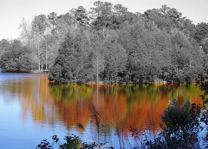 Fall Greeting Card featuring the photograph Fall Reflection by Don Prioleau