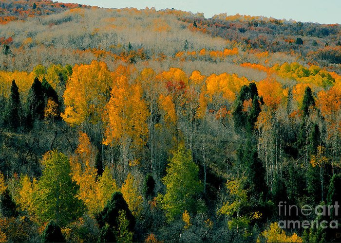 Fall Greeting Card featuring the painting Fall Ridge by David Lee Thompson