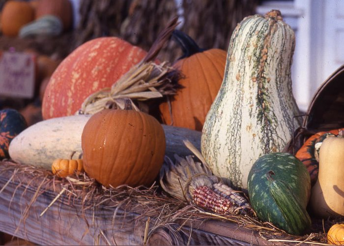 Greeting Card featuring the photograph Fall-roadside-produce by Curtis J Neeley Jr