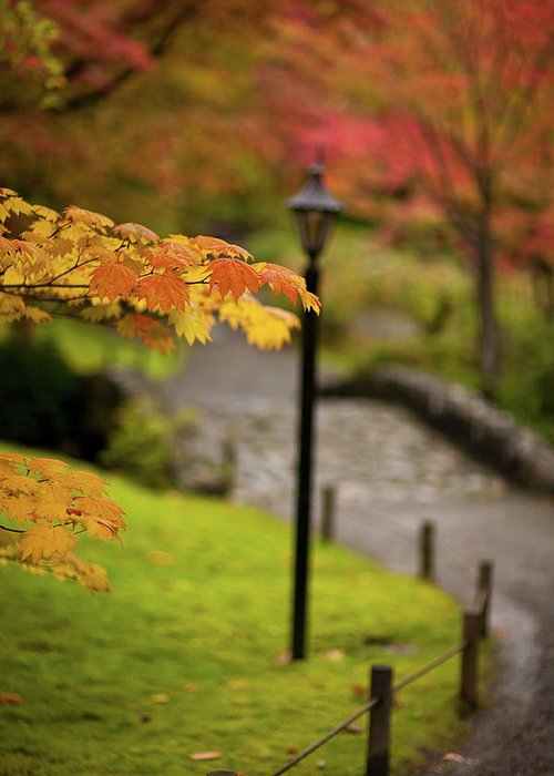 Fall Greeting Card featuring the photograph Fall Serenity by Mike Reid