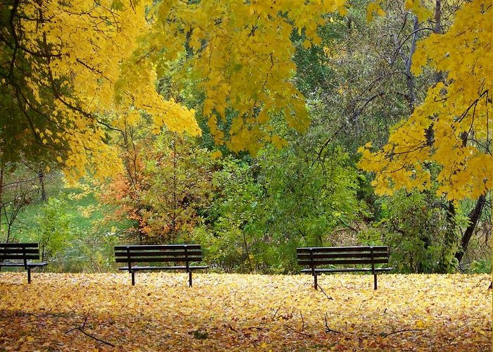 Fall Greeting Card featuring the photograph Fall Series 12 by Anita Burgermeister
