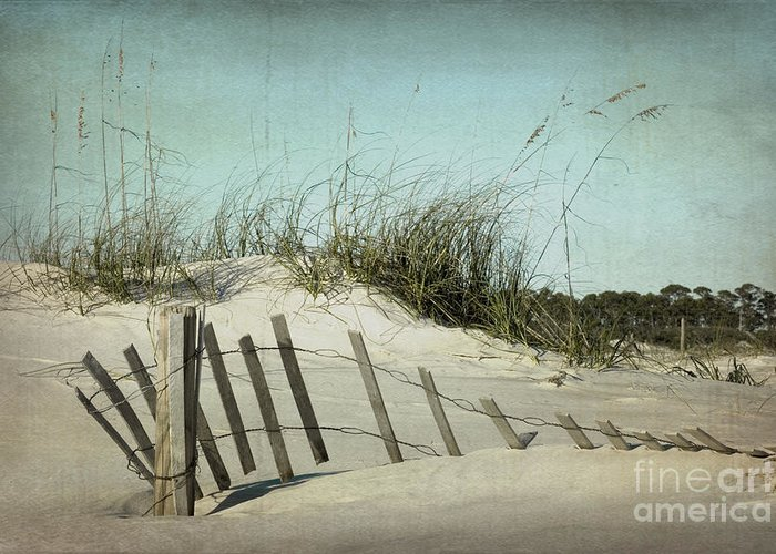 Sand Greeting Card featuring the photograph Fallen by Joan McCool