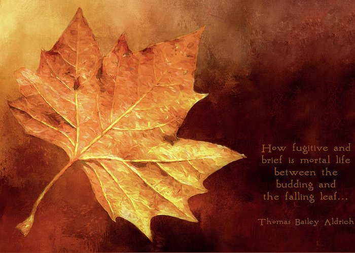 Leaf Greeting Card featuring the digital art Fallen Leaf by Casey Heisler
