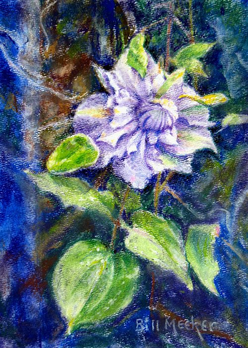 Floral Greeting Card featuring the painting Fancy Clematis by Bill Meeker