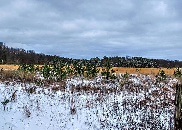 Snowy Farm Field Long Island New York Greeting Card featuring the photograph Old Farm Field Li.ny by Terry McCarrick