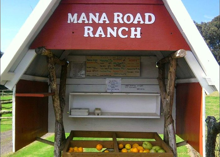 Mana Ranch Greeting Card featuring the photograph Farm To Table by Charles Jennison