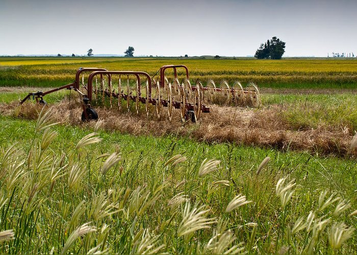 Farm Greeting Card featuring the photograph Farm Work Wiind And Rain by Douglas Barnett