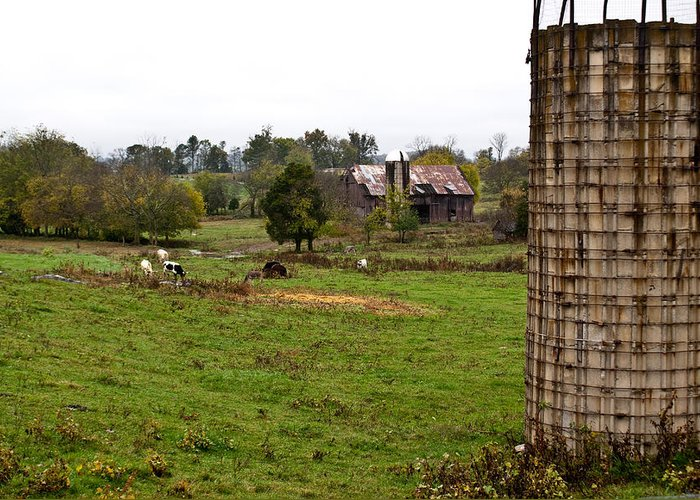 Farm Greeting Card featuring the photograph Farmland by Douglas Barnett