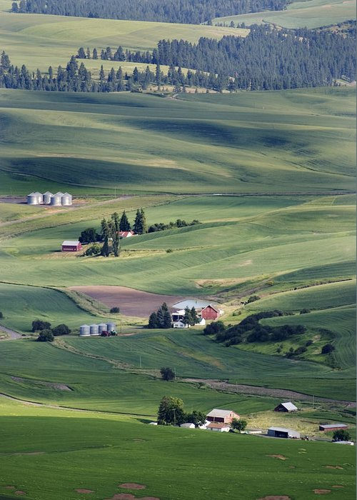 Fertile Greeting Card featuring the photograph Farmland In Eastern Washington State by Carl Purcell