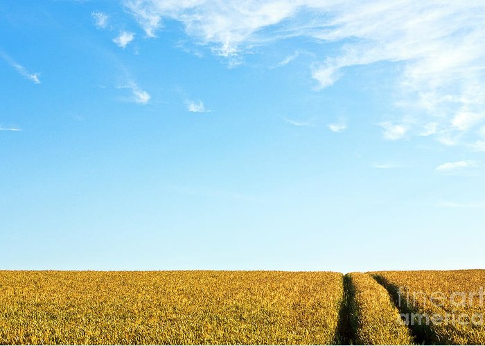 Europe Greeting Card featuring the photograph Farmland To The Horizon 1 by Heiko Koehrer-Wagner
