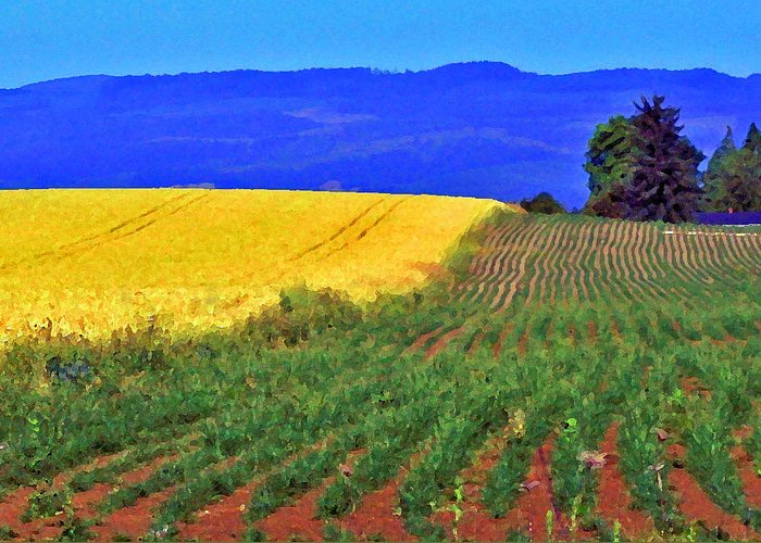 Farmland Greeting Card featuring the photograph Farmlands Of The Willamette Valley by Margaret Hood