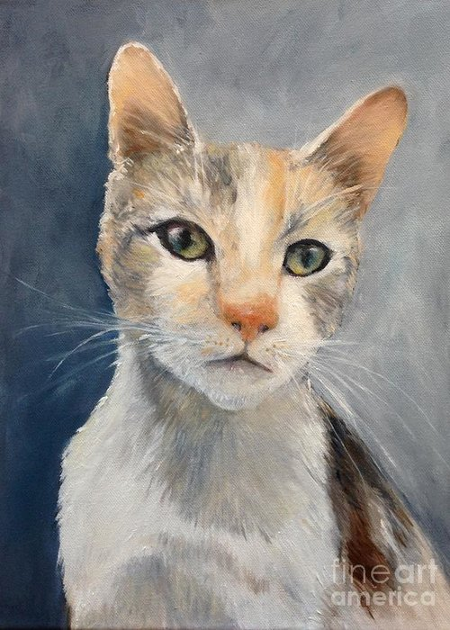 Cat Greeting Card featuring the painting Farmyard Cat by Clodagh Kidd