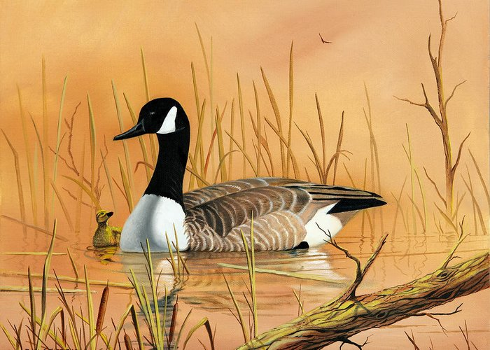 Duck Greeting Card featuring the painting Father And Son by Don Griffiths