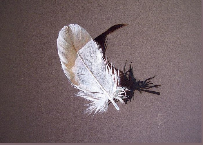 Still Life Greeting Card featuring the drawing Feather And Shadow 1 by Elena Kolotusha