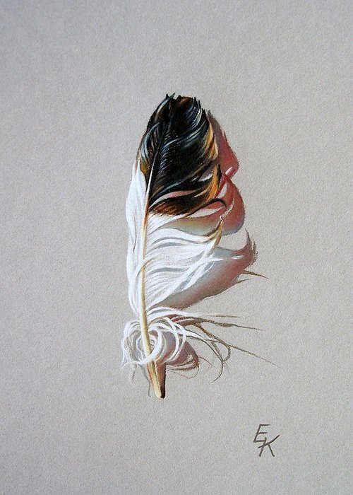 Still Life Feather Greeting Card featuring the drawing Feather And Shadow 3 by Elena Kolotusha
