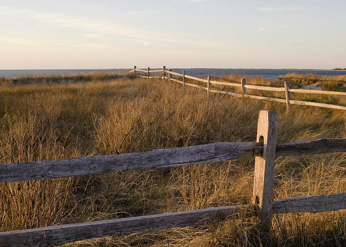 Krauzyk Greeting Card featuring the photograph Fence Along The Dunes - Madaket - Nantucket by Henry Krauzyk