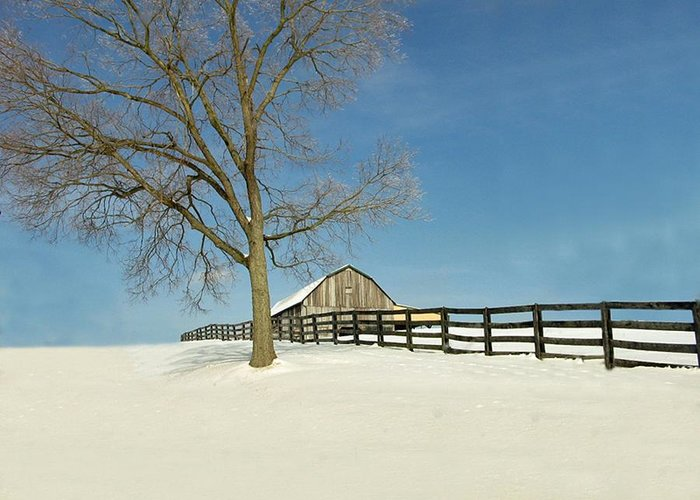 Weather Greeting Card featuring the photograph Fence Line by Martie DAndrea