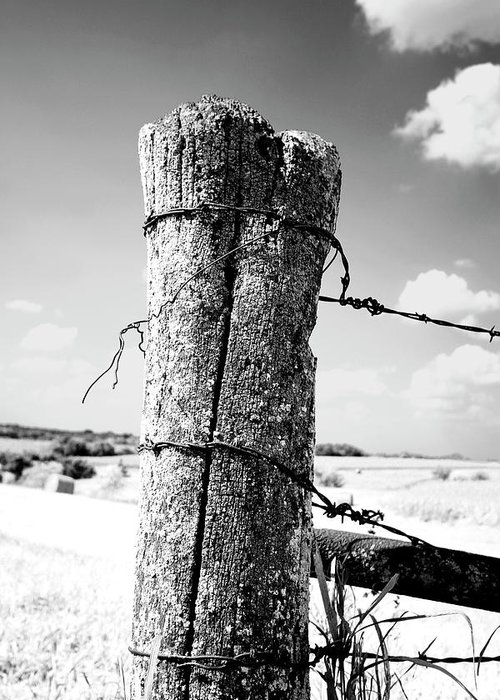 Landscape Greeting Card featuring the photograph Fence Post by Otto Searan