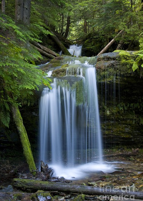 Waterfalls Greeting Card featuring the photograph Fern Falls by Idaho Scenic Images Linda Lantzy