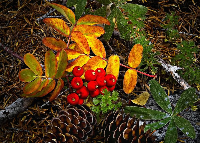 Color Greeting Card featuring the photograph Festive Elements by John Christopher
