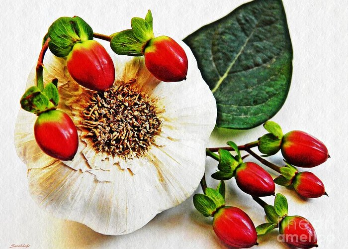 Garlic Greeting Card featuring the photograph Festive Garlic by Sarah Loft