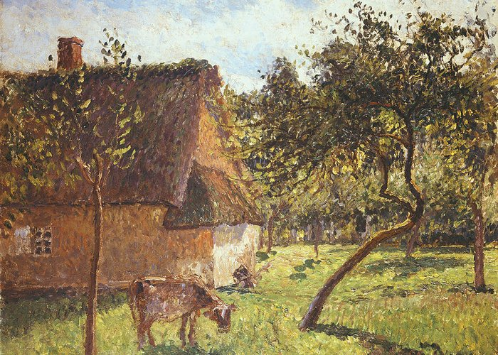 Field At Varengeville Greeting Card featuring the painting Field At Varengeville by Camille Pissarro