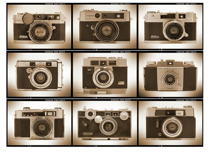 Vintage Cameras Greeting Card featuring the photograph Film Camera Proofs 2 by Mike McGlothlen