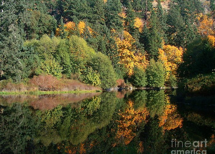Fall Greeting Card featuring the photograph Final Reflection by Larry Keahey