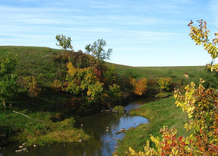 Landscape Greeting Card featuring the photograph Firesteel Creek Autumn by Cindy Gregg