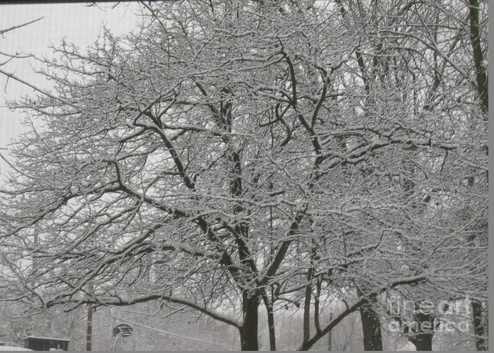 Greeting Card featuring the photograph First Snowfall Of The Season by Barb Montanye Meseroll