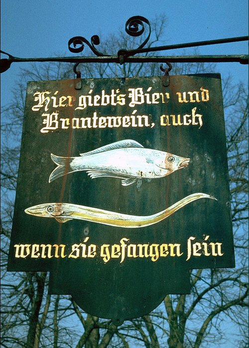 Store Sign Greeting Card featuring the photograph Fish by Flavia Westerwelle