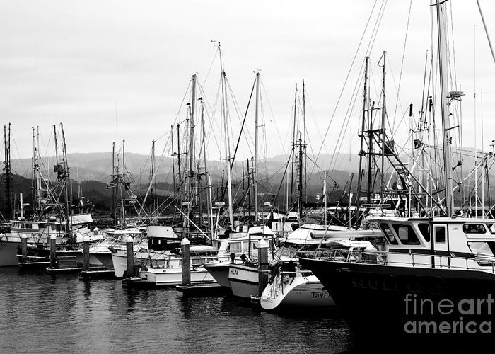 Black And White Greeting Card featuring the photograph Fishing Boats . 7d8208 by Wingsdomain Art and Photography