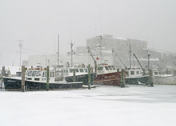 Winter Greeting Card featuring the photograph Fishing Boats During Winter Storm Sandwich Cape Cod by Matt Suess